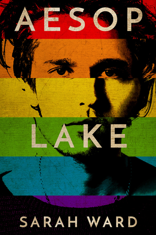 Book cover showing rainbow color blocks over fragmented face.