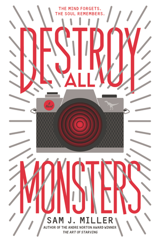 Book cover showing a camera.