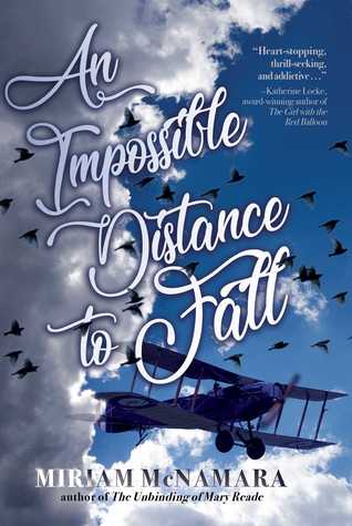 Book cover showing a biplane in the sky with birds.