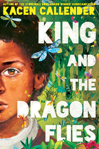 Book cover showing a Black boy and dragonflies.