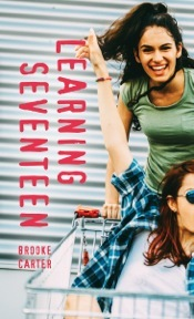 Book cover showing a girl pushing another in a shopping cart.