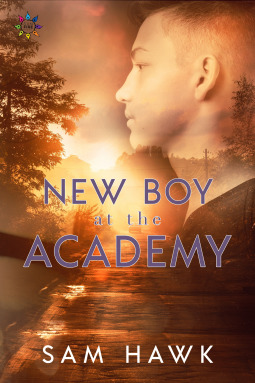 Book cover showing a boy's face over a sunset.