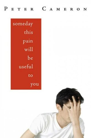 A white background with a red box that reads Someday This Pain Will Be Useful To You. A boy is in the bottom right corner with his hands over his face.