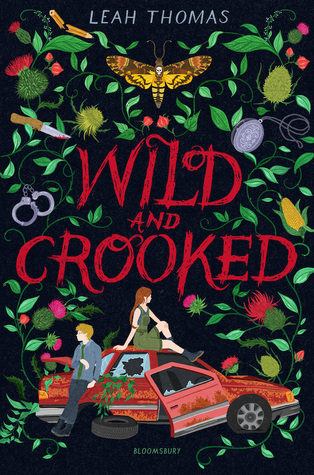 Book cover showing two people lounging on a broken down car surrounded by flowers.